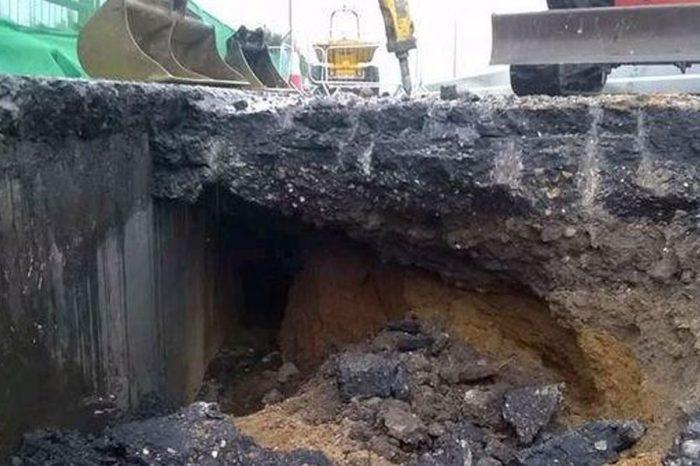 Drivers bugged by bunnies burrowing under motorway
